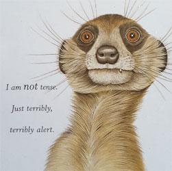 I am not tense, just terribly, terribly alert